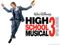 HSM 3 - high-school-musical-3 wallpaper