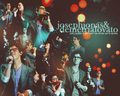 Jemi Wallpaper - jemi wallpaper