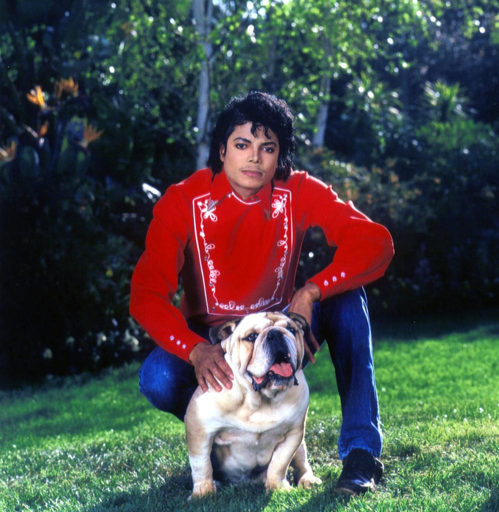 MJ And Bulldog Large