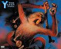 Official Vertigo Wallpapers | Y: The Last Man