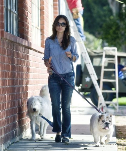 Olivia Wilde Waling Her Dogs (18/03/10)