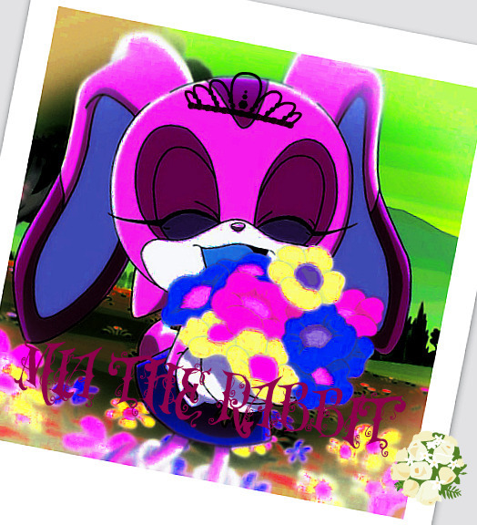 Princess Mia the rabbit