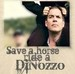 Save A Horse, Ride DiNozzo