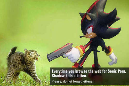 Shadow dislikes sonic porn - shadow-the-hedgehog Photo