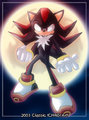 Shadows moon - shadow-the-hedgehog photo