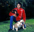 Soul Man Michael - michael-jackson photo