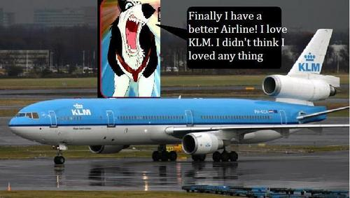 Steele and his good airline