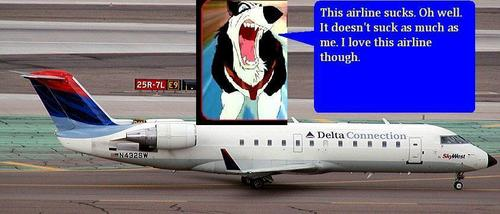 Steele and his suckish airline