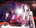 Steven Tyler Wallpaper <3