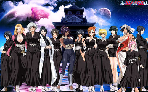 Bleach عملی حکمت پیپر وال titled The Bleach Shinigami Females