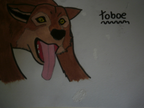 Toboe - bởi Me-