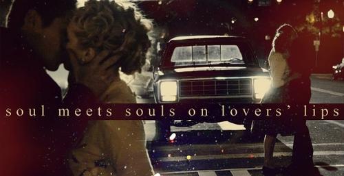 Vampire Diaries Banner
