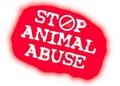 droits des animaux