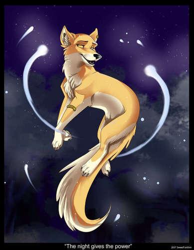 anime lobos