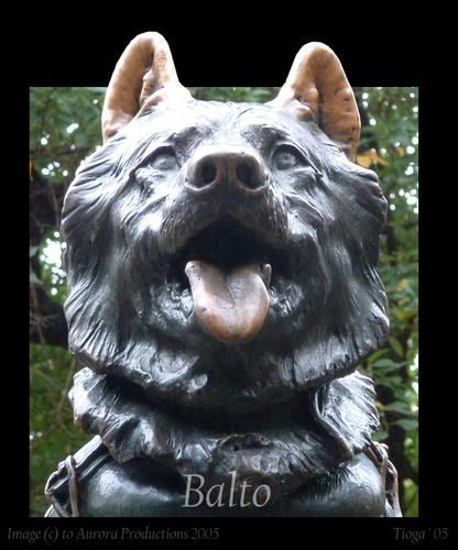 balto new york