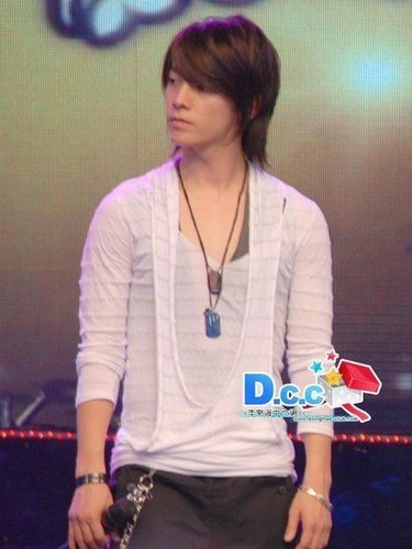 donghae - super-junior-or-elf Photo
