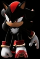 perfect landing - shadow-the-hedgehog photo