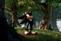 shadow is lost in thought - shadow-the-hedgehog photo