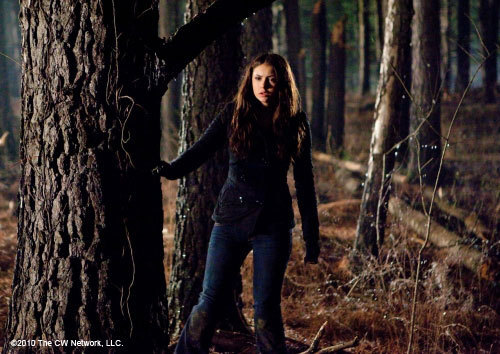 http://images2.fanpop.com/image/photos/11000000/1-17-let-the-right-one-in-promo-photos-the-vampire-diaries-tv-show-11081940-500-354.jpg