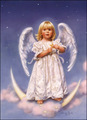 Baby angel - sweety-babies photo