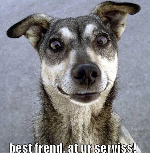 Best Friend !!