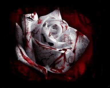 Bloody Rose - future-authors Photo
