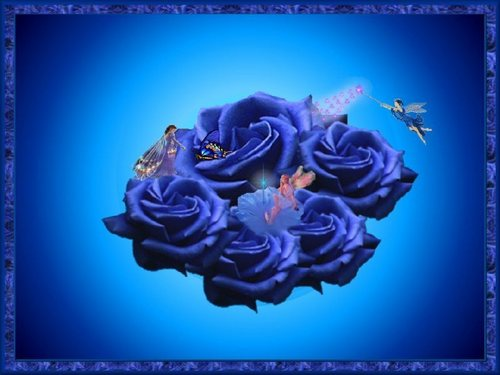 Blue rosas And hadas