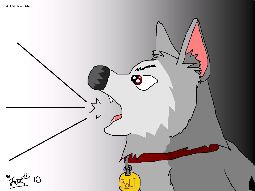 BoltsBiggestFan disney Bolt Jan 2010 fan Art