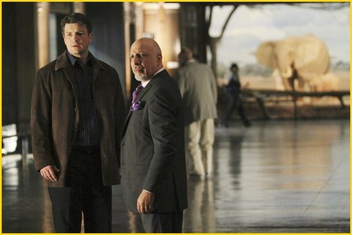 istana, castle - 2x19 - Wrapped Up In Death - Promotional foto-foto