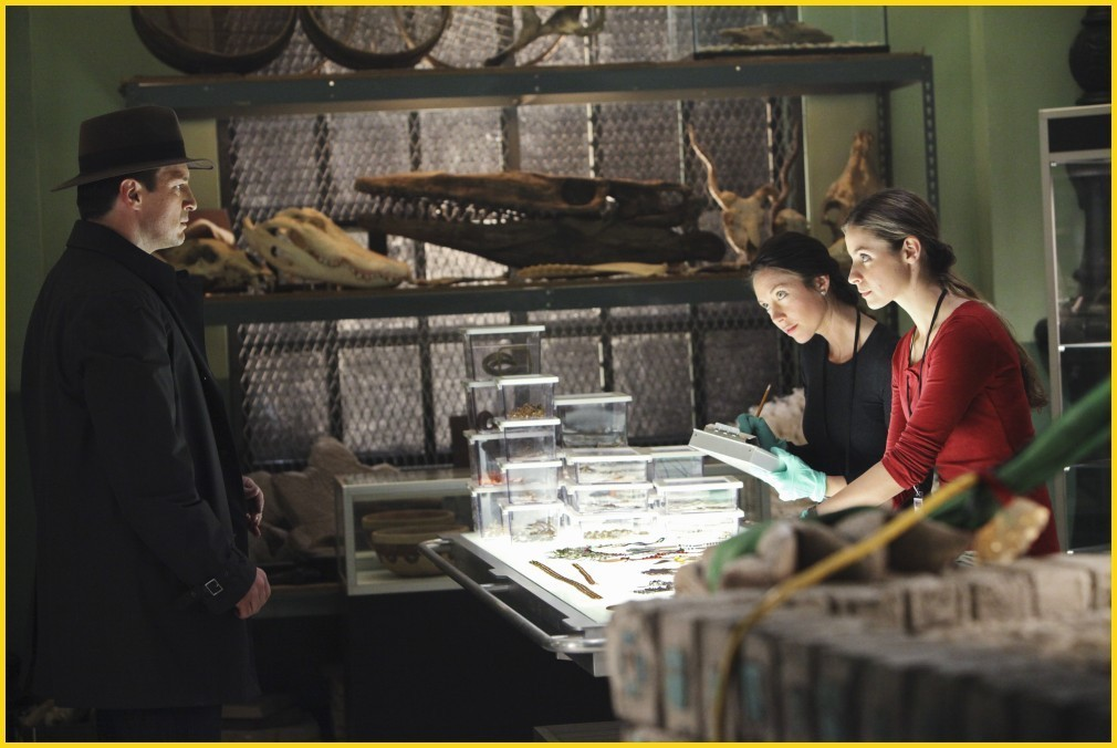 kastil, castle - 2x19 - Wrapped Up In Death - Promotional foto
