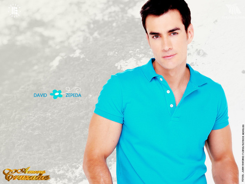 TELENOVELAS wallpaper titled David Zepeda