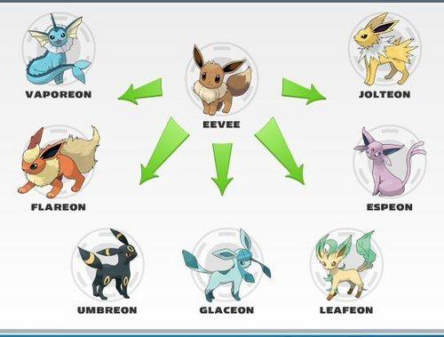Eevee and Evolutions