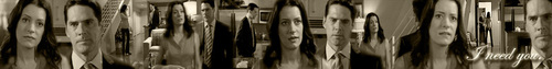 Hotch and Emily Banner!