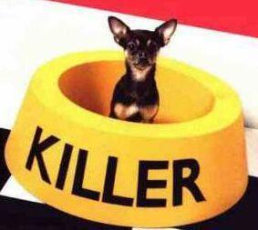 Killer......lol.lol.lol