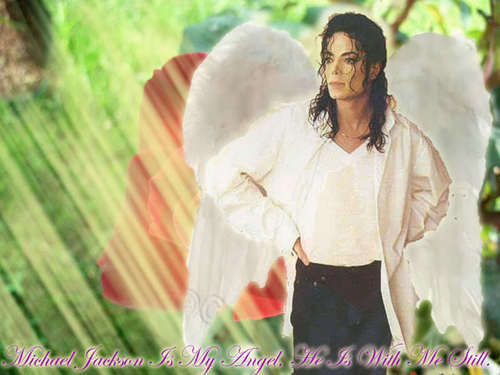 Heaven Can Wait achtergrond entitled Michael, our Angel