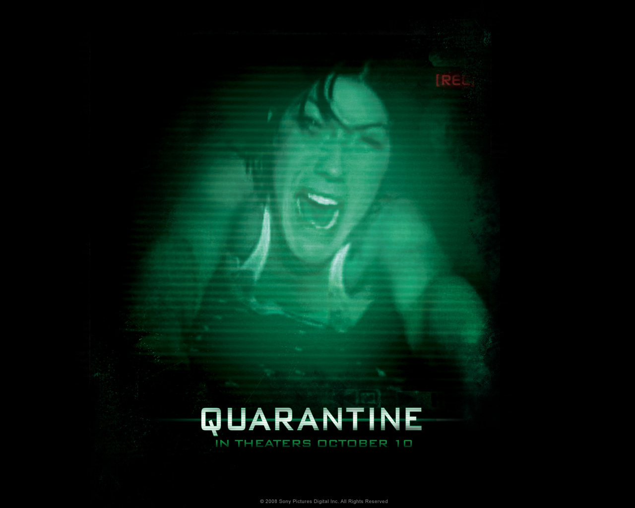 quarantine images quarantine hd wallpaper and background