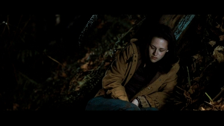 Screencaps of Bella in the woods [NewMoon]
