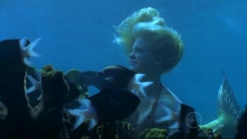 rikki underwater