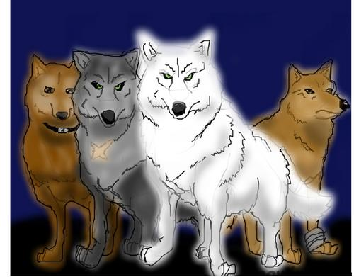 anime animal achtergrond titled wolf's rain