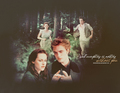 B and E - twilight-series photo