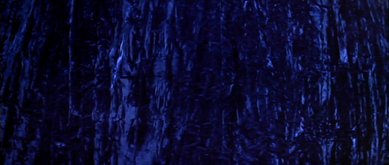 David Lynch Images Blue Velvet Wallpaper And Background Photos