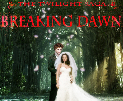 Breaking Dawn, The Wedding