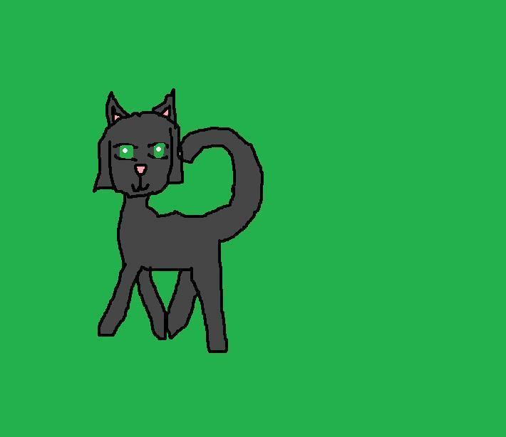 Buttercup kitty