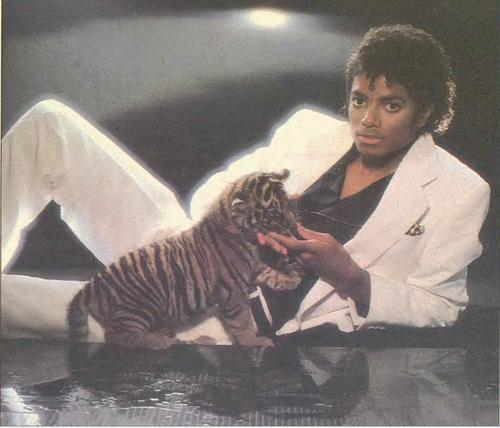MJ fantasy