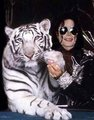 MJJ is Yumaayyyy - michael-jackson photo