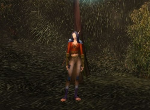 My Sweat Mage (Eonar) - world-of-warcraft Photo
