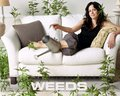 Nancy Botwin - weeds wallpaper