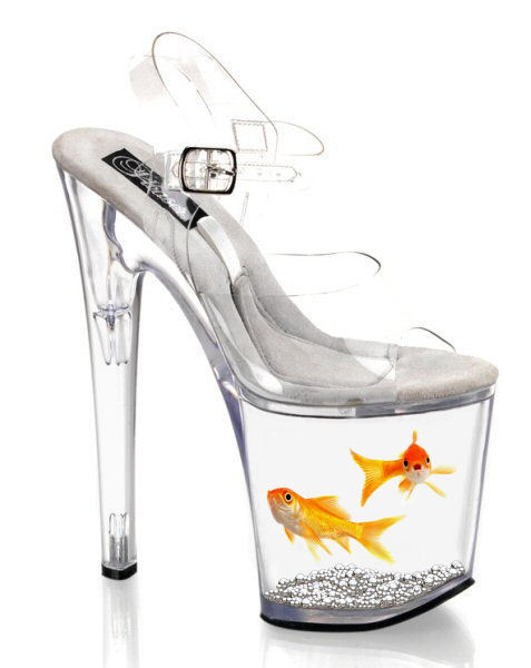 Nat the goldfish used for a shoe xO