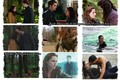 New moon Collage - twilight-series photo