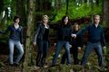 One more Eclipse Still- Cullens - twilight-series photo